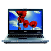 Asus M5A-6006 notebook