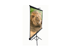 "EliteScreen T99NUWS1 99""(1:1)177,8*177,8"
