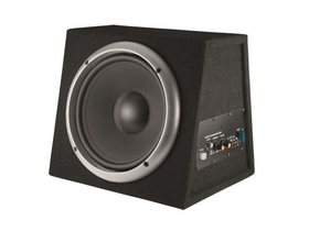 Subwoofer SAL BS 10/A, 250mm, inchis