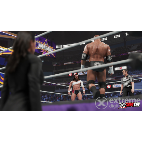 Joc PS4 WWE 2K19